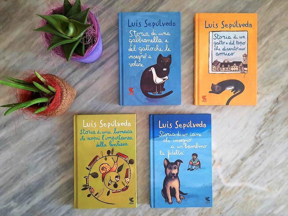 immagine con i 4 libri da leggere in spiaggia di sepulveda e due piantine di cactus